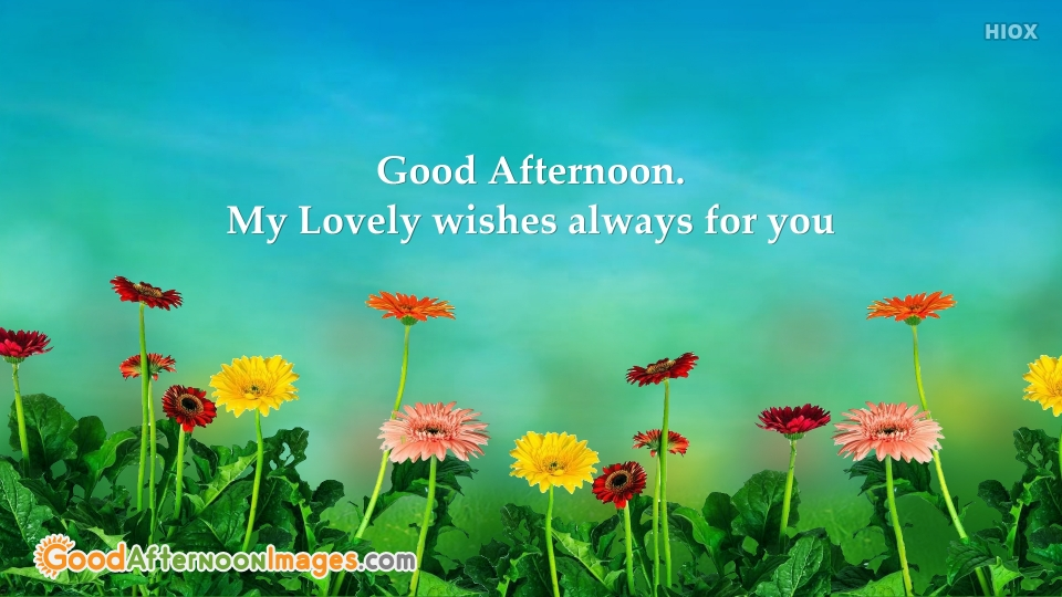 Awesome Good Afternoon Quotes