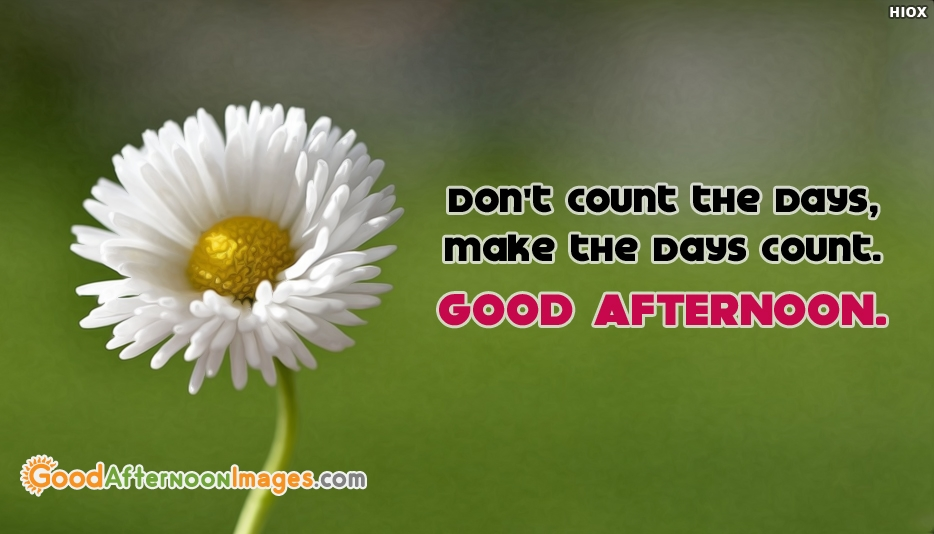 Dont Count The Days, Make The Days Count. Good Afternoon - Inspirational Good Afternoon Images