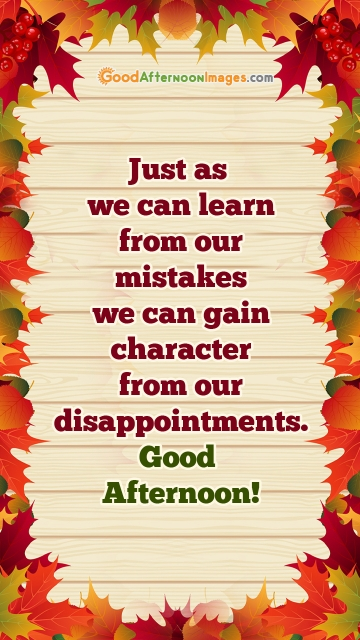 Just As We Can Learn From Our Mistakes We Can Gain Character From Our Disappointments.