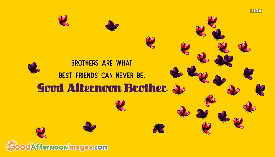 Good Afternoon Brother Quotes