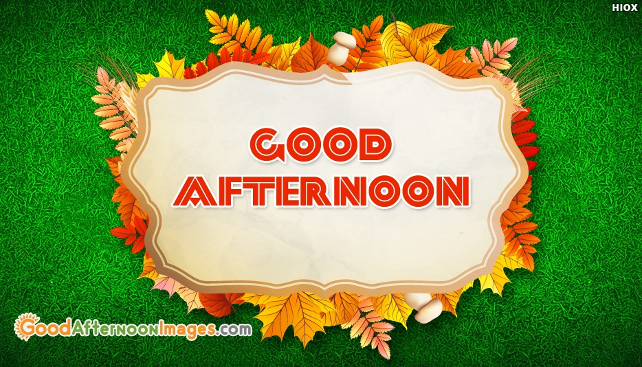 Good Afternoon Wallpaper Free Download Magnificent Gud Afternoon Image Download