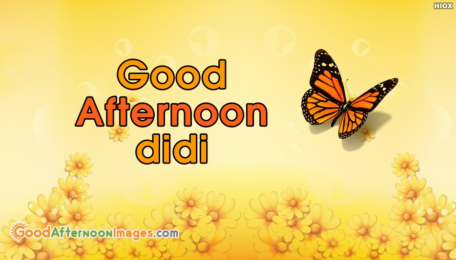 Good Afternoon Didi - Good Afternoon Images for Didi