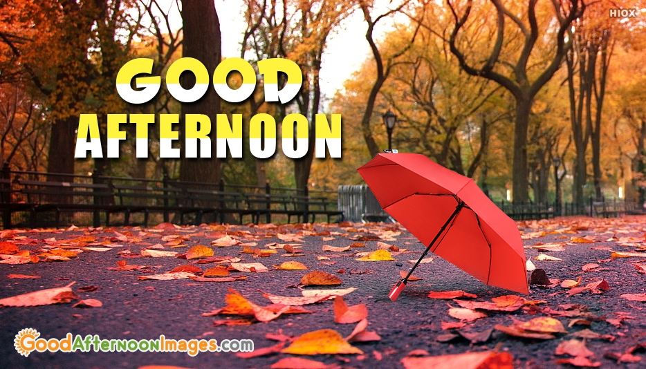 Good Afternoon Dp - Good Afternoon Images for Friends
