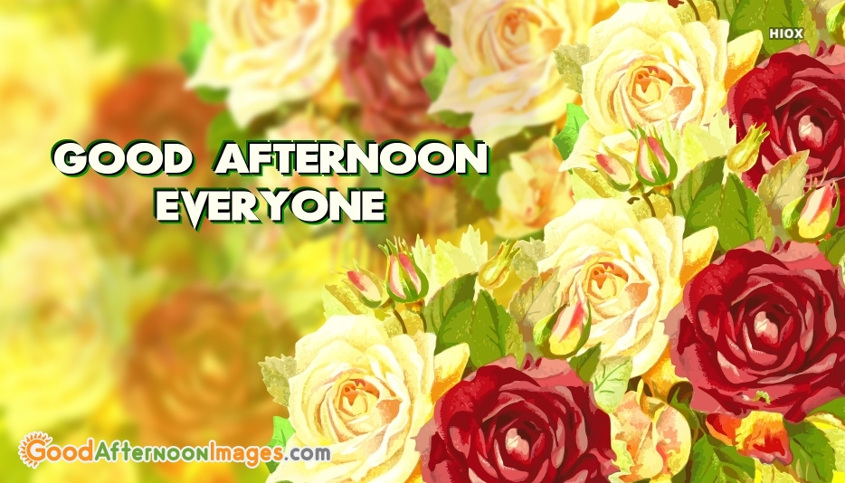 Good Afternoon Everyone Photo