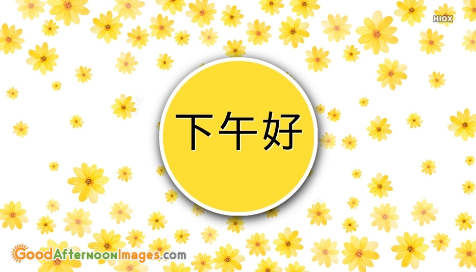 Good Afternoon Greetings In Chinese | 下午好