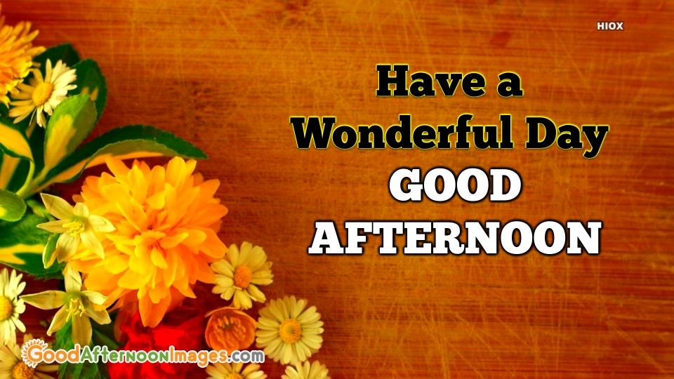 Good Afternoon. Have A Wonderful Day