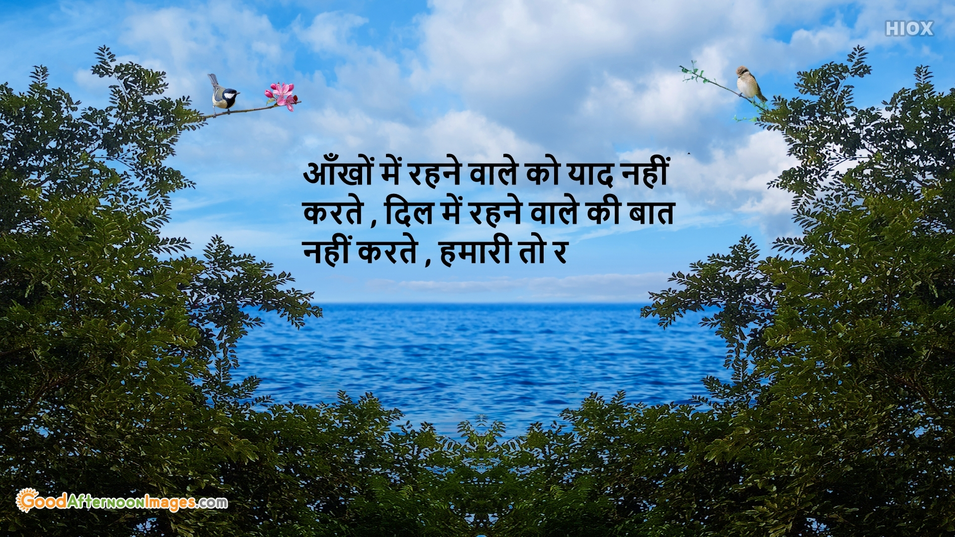 Good Afternoon Image With Shayari