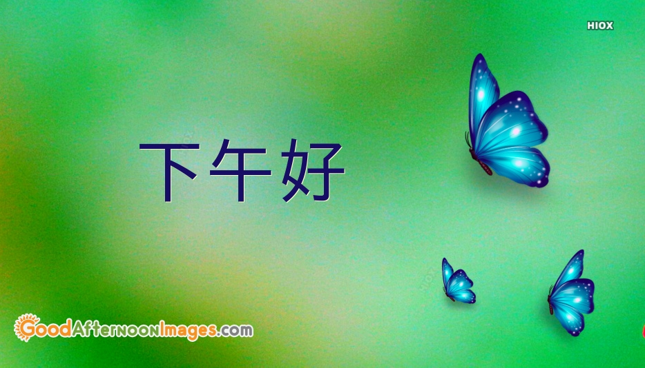 Good Afternoon In Chinese