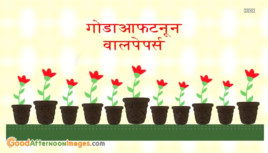 Good Afternoon In Hindi   गोडाआफटनून वालपेपर्स