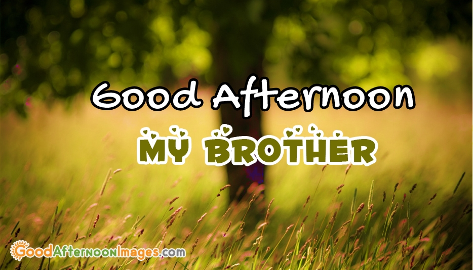 Good Afternoon My Brother @ GoodAfterNoonImages.com