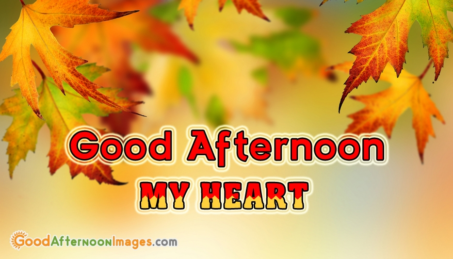Good Afternoon My Heart - Good Afternoon Images for Lover