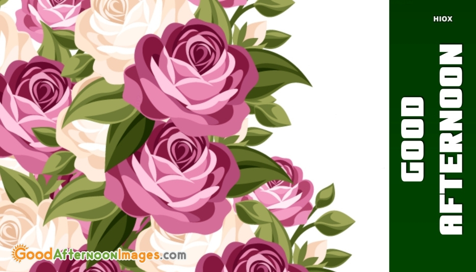Good Afternoon Images With Rose Flowers