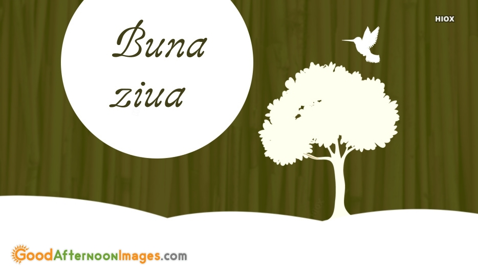 Good Afternoon Romanian | Buna Ziua