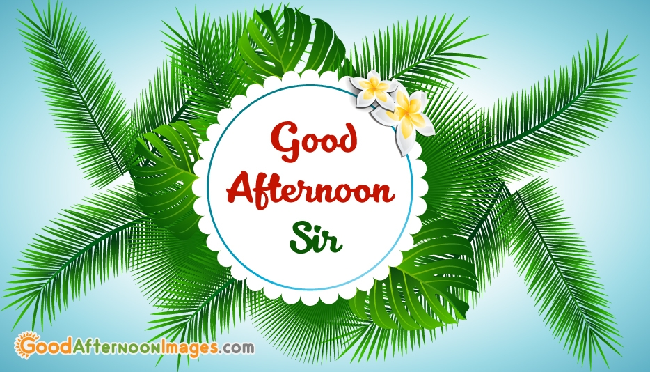 Good Afternoon Teacher Wishes Images