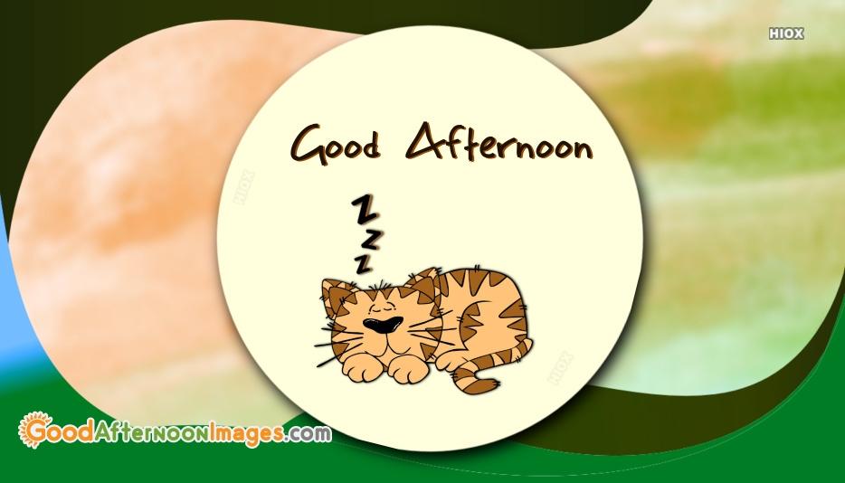 Good Afternoon Sleep