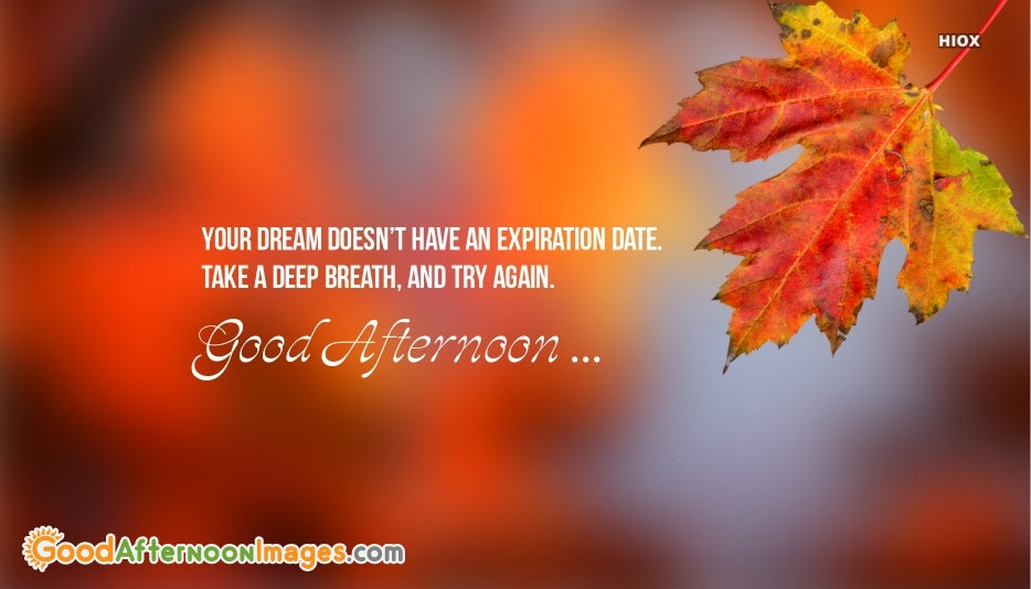 Good Afternoon Sms Image