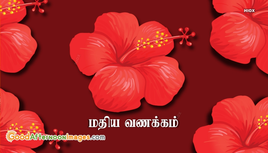 Good Afternoon Tamil