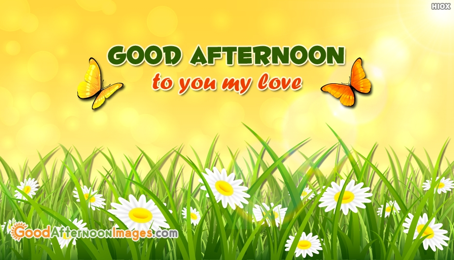 Good Afternoon To You My Love Image