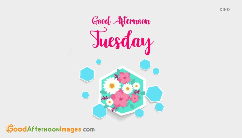 Good Afternoon Tuesday Wishes