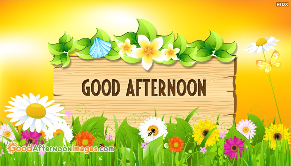 Good Afternoon Wallpaper Free Download New Gud Afternoon Image Download