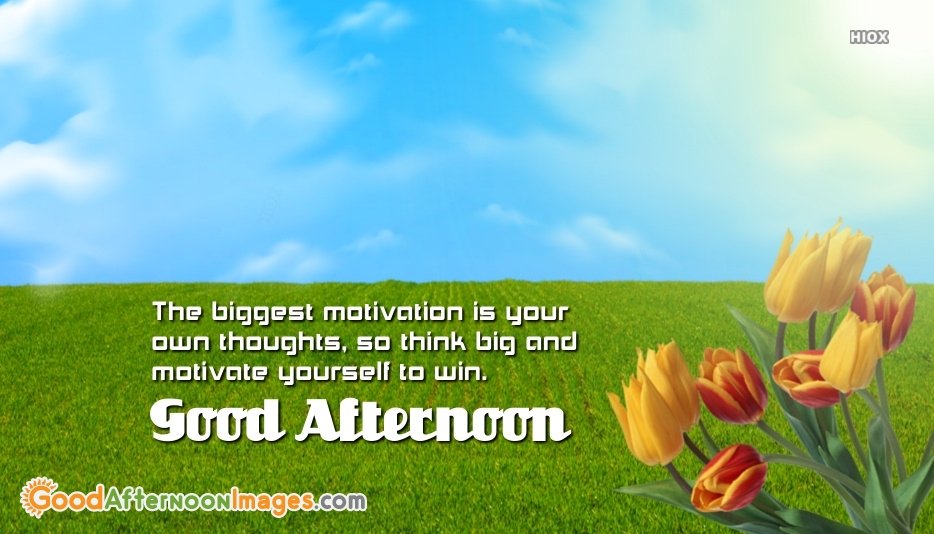 Good Afternoon Wishes Hd Image