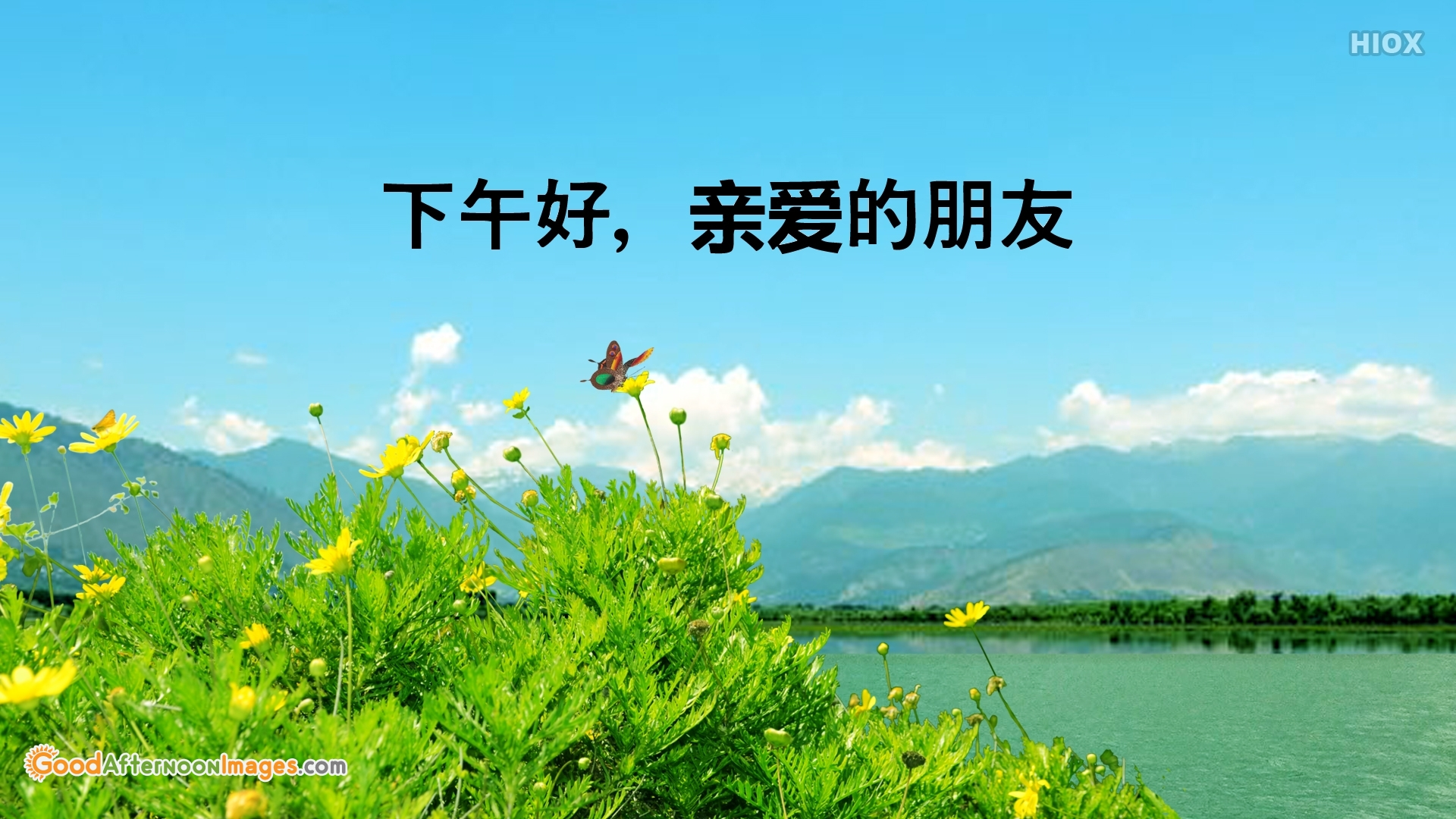 Good Afternoon Wishes In Chinese
