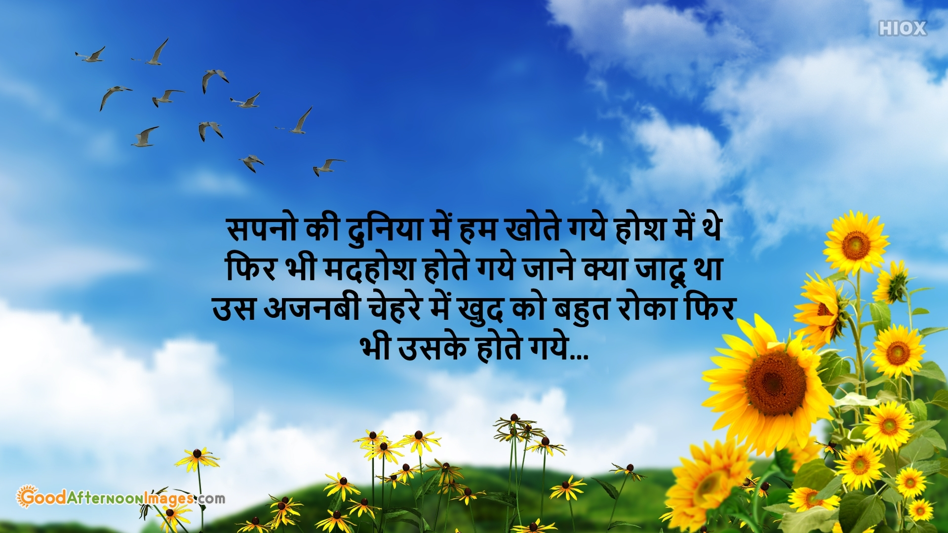 Good Afternoon Wishes Image In Hindi Download