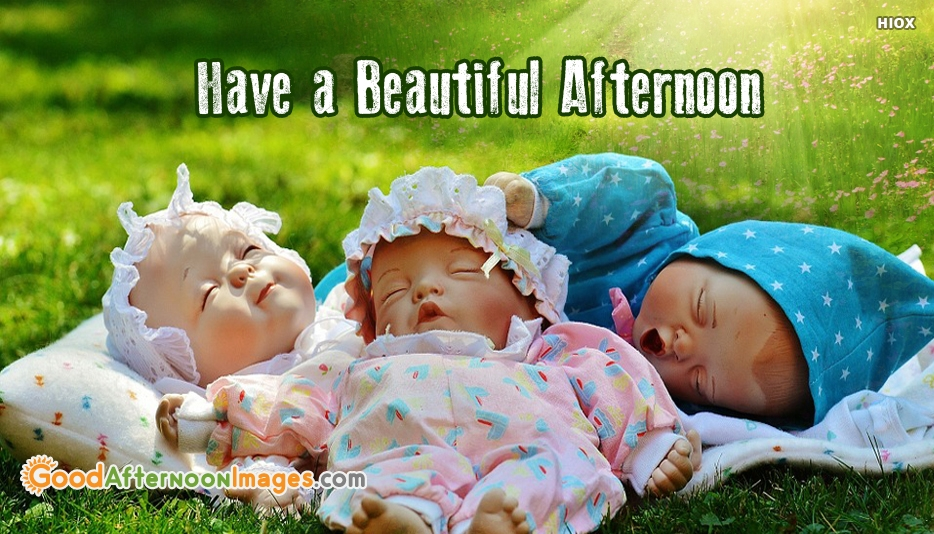 Good Afternoon With Babies - Have  A Beautiful Afternoon