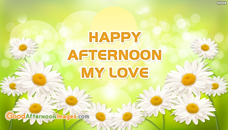 Happy Afternoon My Love At Goodafternoonimagescom