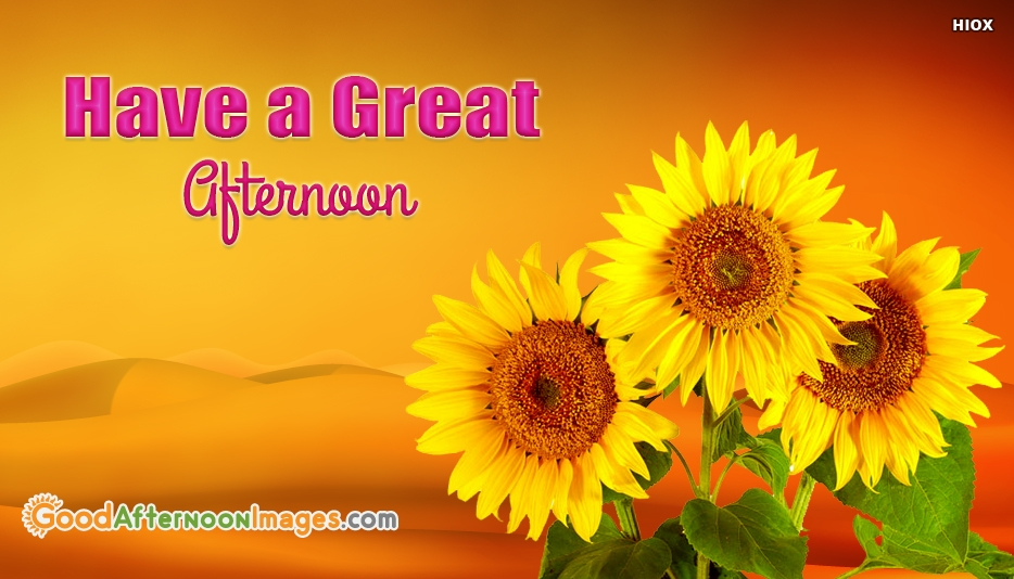 Have A Great Afternoon At Goodafternoonimagescom