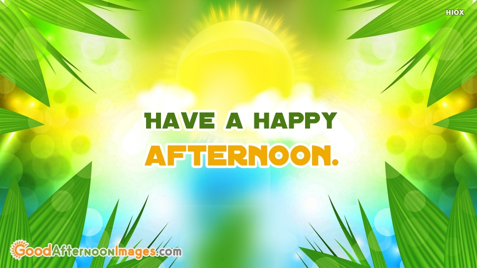 Have A Happy Afternoon.