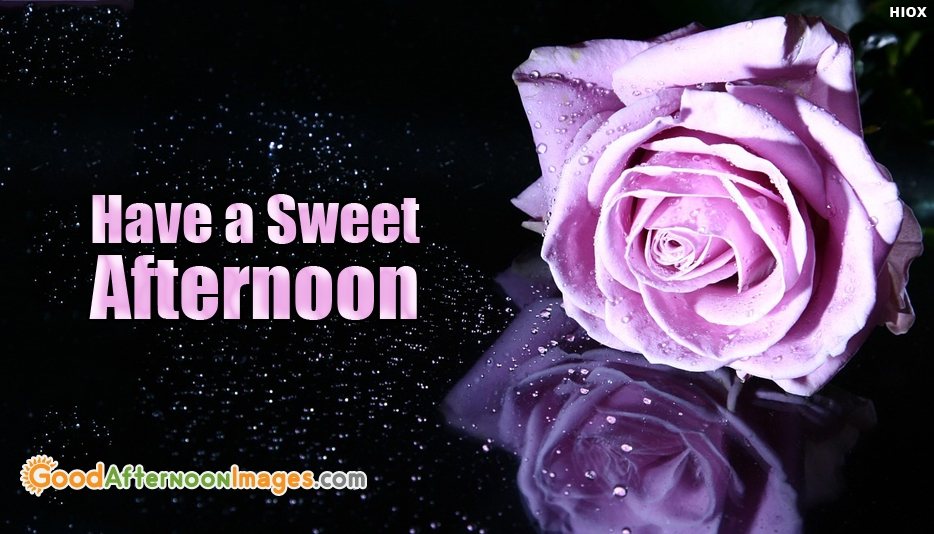 Good Afternoon Wishes Images For Colleagues
