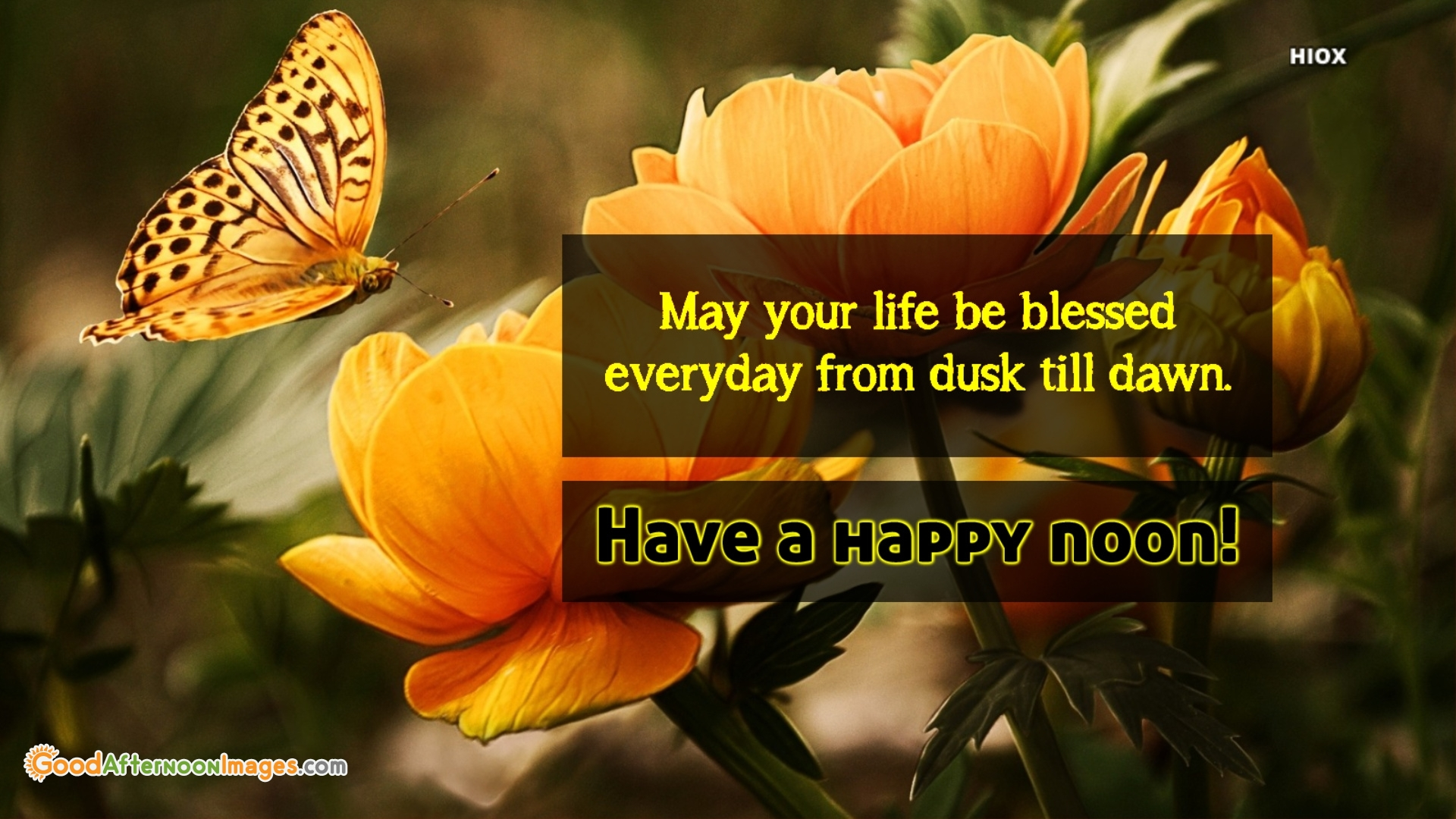 May Your Life Be Blessed <br />Everyday From Dusk Till Dawn.