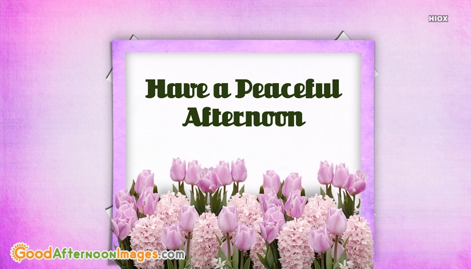 Peaceful Afternoon Wishes