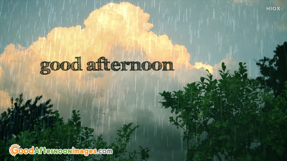 Rainy Good Afternoon Wish Free Download