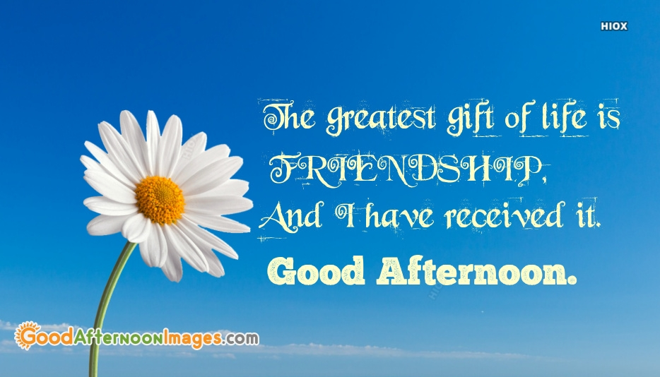 The Greatest Gift Of Life Is Friendship, And I Have Received It. Good Afternoon