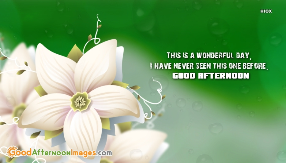 This Is A Wonderful Day Quote Image