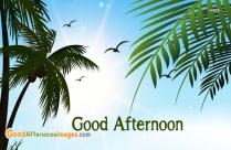 Good Afternoon Feeling