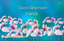 Good Afternoon Wishes To Friends