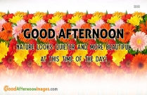 Good Afternoon Best Wishes Quote