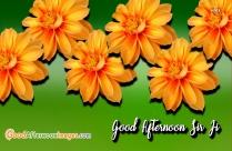 Good Afternoon Sir Ji Images