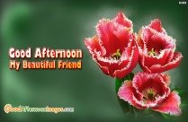 Good Afternoon Wishes For GF