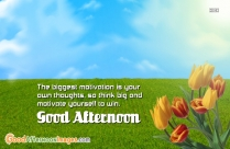 Good Afternoon Message Photo