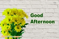Good Afternoon Yellow Flowers