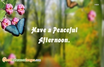 Have A Peaceful Afternoon