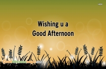 Wishing U A Good Afternoon