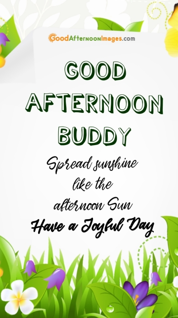 Whatsapp Good Afternoon Wishes