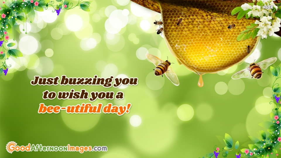 Just Buzzing You To Wish You A Bee-utiful Day!